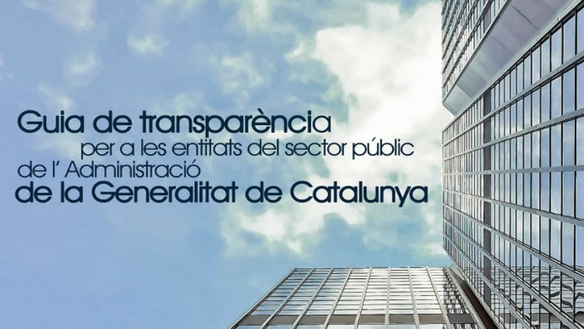 Public sector entities transparency guide